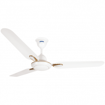 1200 mm Dhoom White