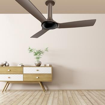 A touch of luxury with Luminous Signature Fans